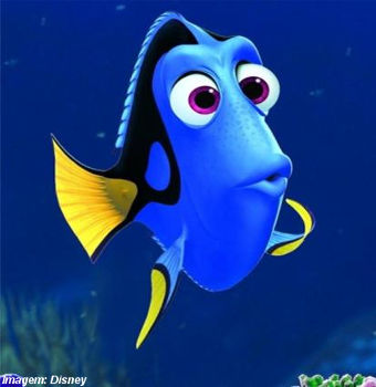 Personagem do filme Procurando Dory